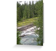 montana Greeting Card