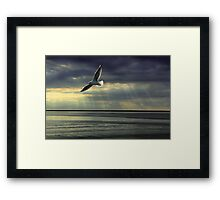 Jonathan Livingston Seagull  Framed Print