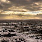 Ocean in the winter  by Lady  Dezine