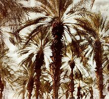 Palm Trees in Grunge by WildestArt