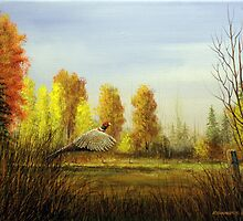 October Afternoon by Rich Summers