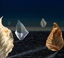 Moonlit Sail by justimagine