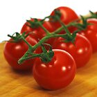 Tomatoes by SLRphotography