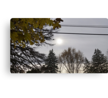 Cold but Beautiful Canvas Print