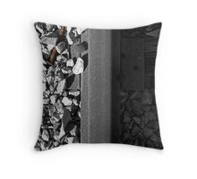 Unsecured Throw Pillow