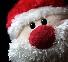 Ho! Ho! Ho! by Nigel Dourley