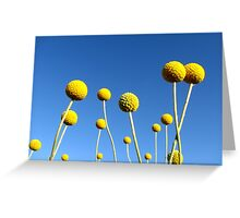 Sunshine on a Stick Greeting Card
