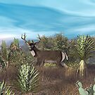 Texas Mule Deer by Walter Colvin