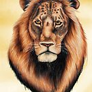 Lion by Penny Edwardes