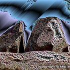 Stones by Maj-Britt Simble