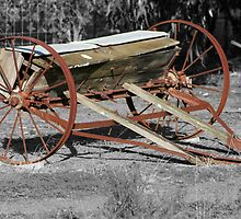 Old Seeder by Nigel Donald