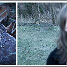 Frozen memories. by Rebecka Wärja