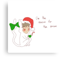 """reason for the season"" weird cats Canvas Print"