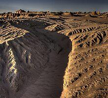Alien landscape by Peter Hammer