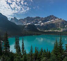 Lake O'Hara by Carrie Cole