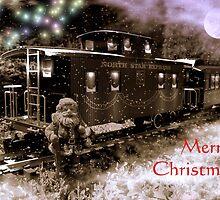 Christmas Sparkle by Steven  Agius