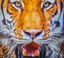 A Look Into The Tiger's Eyes by damhotpepper
