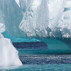 Antarctica by Robyn Maynard
