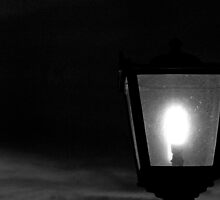 Lamp by Dave Pearson