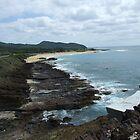 Hawaii Beach 3 by Lainey Simon