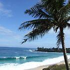 Hawaii Beach 13 by Lainey Simon