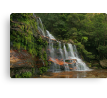 Katoomba Falls .. with green & orange Canvas Print