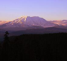 Mt St Helens by Saraina Lewis