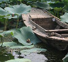 Old Boat by KLiu