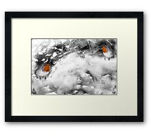 Traditional Christmas Illustration: Robins on a Snow-covered Wall Framed Print