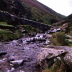 Carding Mill Valley by Rachel Harris