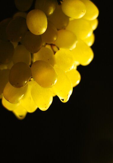 Grapes by Mohammed Al Ibrahim