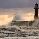 Crashing Waves by Anna Ridley