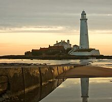 Reflections by Anna Ridley