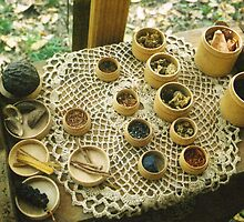 Natural Dyes by Sarah Stults