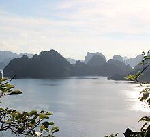 Bay Panorama III - Ha Long Bay, Vietnam. by Tiffany Lenoir