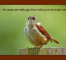 Looking on the Bright Side by Bonnie T.  Barry