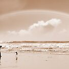one man a rainbow and his dog by morrbyte