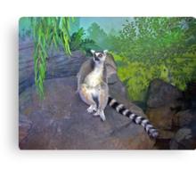 One Cool Lemur Canvas Print