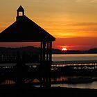 Good Morning Douglas Lake by KBSImages