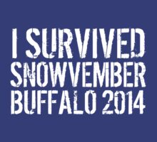 Awesome 'I survived Snowvember Buffalo 2014' Snowstorm T-Shirt and Accessories T-Shirt