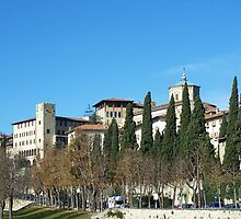 Bergamo tree-lined avenue by CiaoBella
