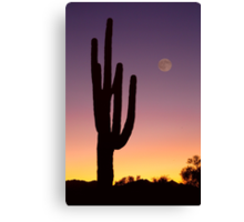 Early Morning Southwest Desert Moon Glow Canvas Print