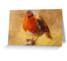 Artwork - Robin Red Breast Greeting Card