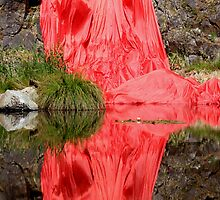 Crimson Tide by Varinia   - Globalphotos