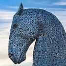 Kelpie Horse  by M.S. Photography/Art