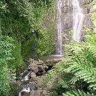 Maui Waterfall by Rebecca Jarboe