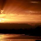Golden Dawn - Windsor, NSW by Kim Roper