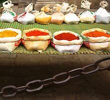 colorful spices by dominiquelandau