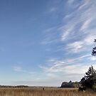 Curved cloud slivers over Georgia marsh by Nadia Korths