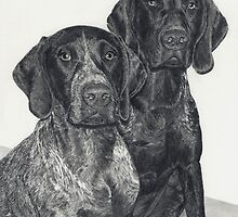 German Shorthairs by Marlene Piccolin